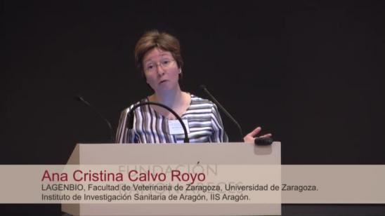 Ana Cristina Calvo Royo: