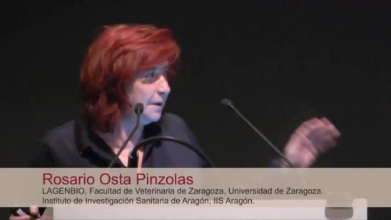 Rosario Osta Pinzolas: